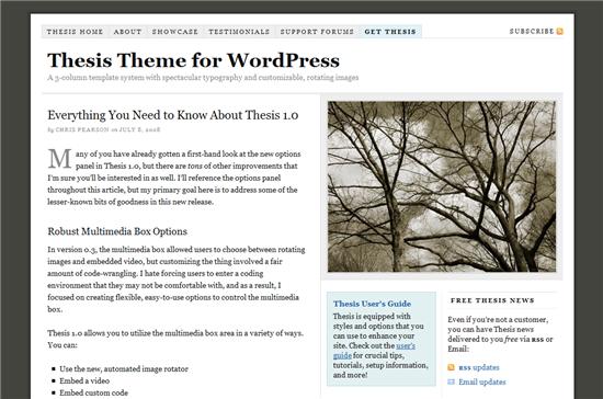 wordpress_thesis_theme_1